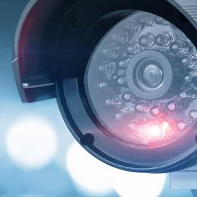 """<ul class=""""accent-bullets""""> <li>Ethernet technology</li> <li>IP network </li> <li>Covert Cameras</li> <li>Web-based Systems</li> </ul>"""